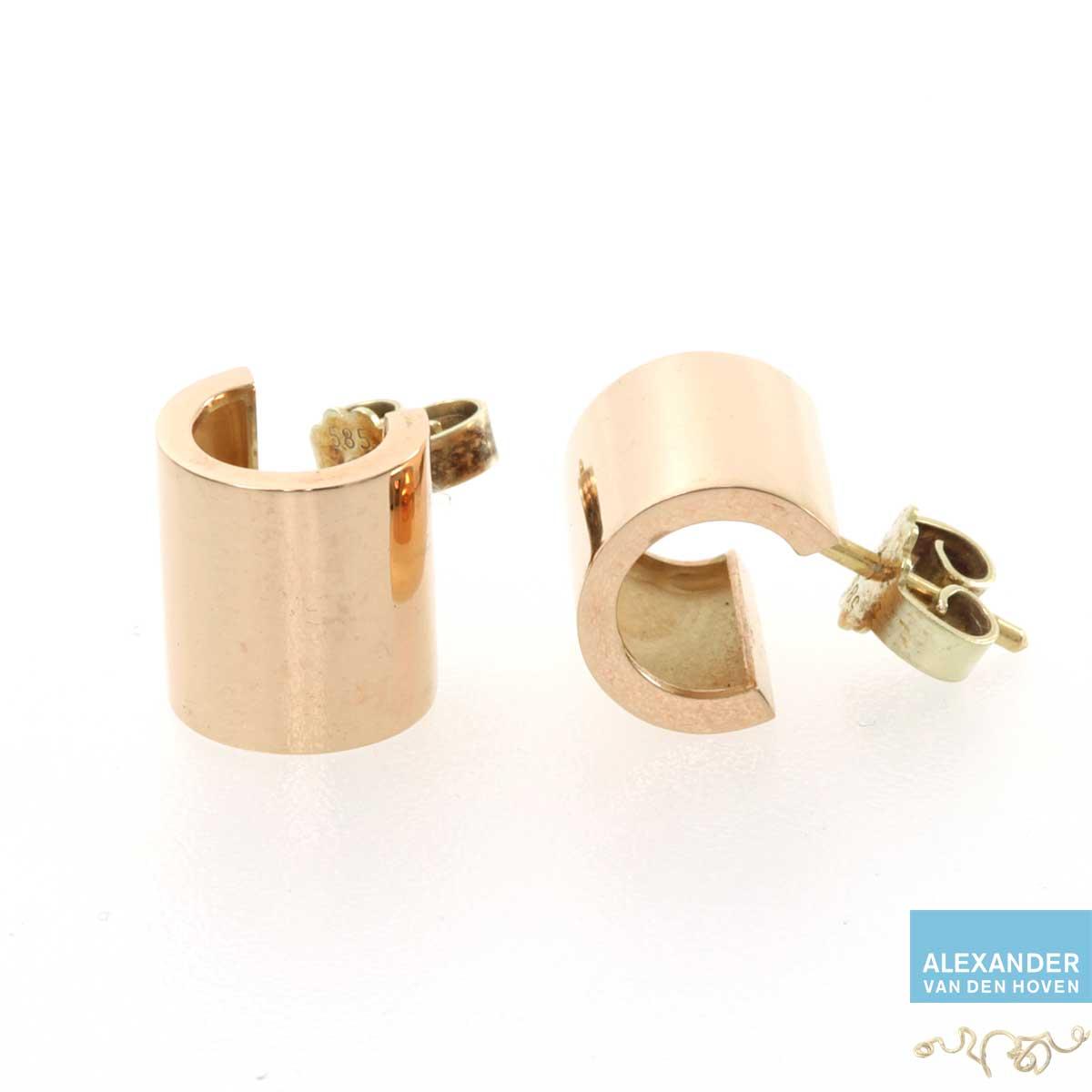 Gouden oorknopjes buis