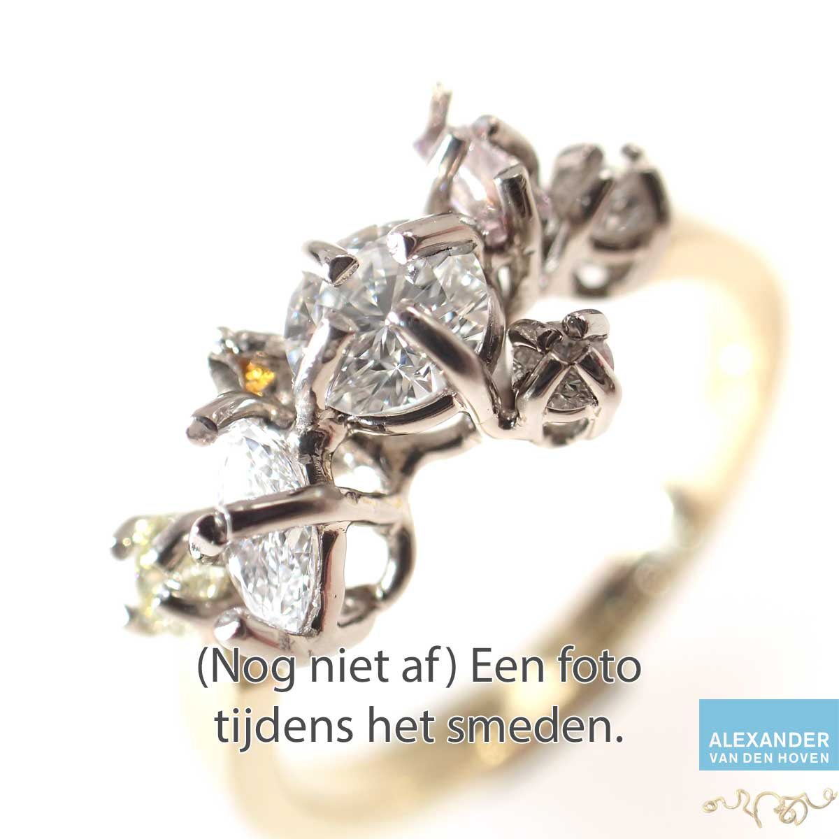 Witgouden-Diamant-Cluster-ring